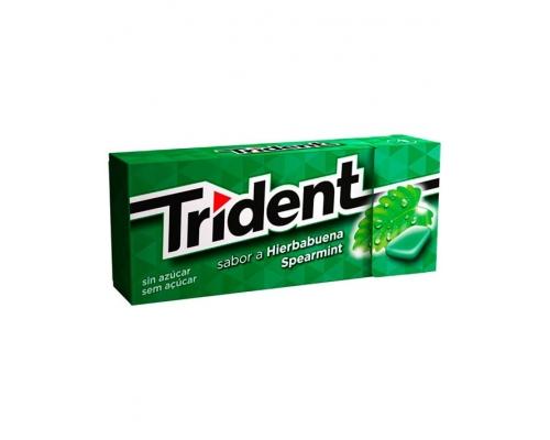 Trident Spearmint Chewing Gum 14,5 Gr